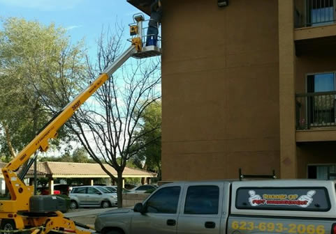 bee-removal-apartment-complex